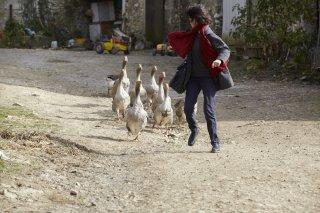 Il medico di campagna: Marianne Denicourt in un momento del film
