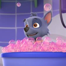 Paw Patrol: un'immagine tratta dalla serie animata