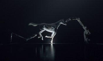 images/2016/12/05/westworld_horse1.jpg