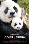 Locandina di Born in China