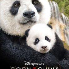 Locandina di Born in China