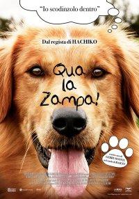 Qua la zampa! in streaming & download