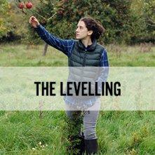 Locandina di The Levelling