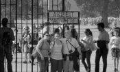 Il mese del documentario a Firenze dal 27 gennaio
