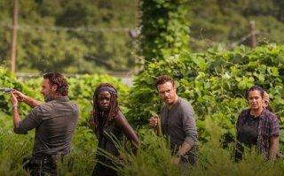 The Walking Dead: Danai Gurira e Andrew Lincoln in una scena