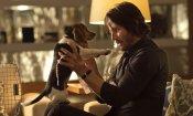 Dog Wick: nella video parodia di John Wick il cane si vendica!