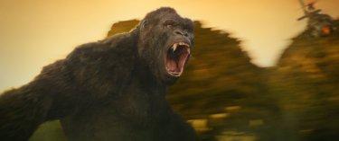 Kong: Skull Island - La foto del mostro