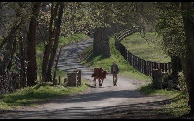 In viaggio con Jacqueline - Trailer italiano