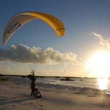 Aldabra - C'era una volta un'isola: un'immagine del documentario