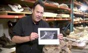 Ghostbusters: team di paleontologi chiama Zuul un nuovo dinosauro