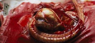 Alien, una celebre (e terrificante) scena del film