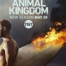 Animal Kingdom: la locandina della seconda stagione