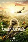 Locandina di Colombia: Wild Magic