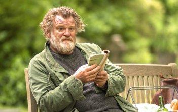 Appuntamento al parco: Brendan Gleeson in una scena del film