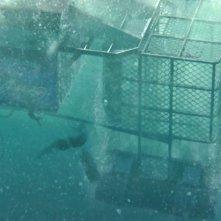 Open Water 3: una scena subacquea del film