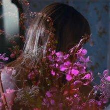 Woodshock: Kirsten Dunst in una suggestiva immagine del film