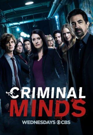 Criminal Minds: il poster della tredicesima stagione