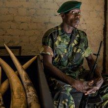 Ivory. A Crime Story: un momento del documentario