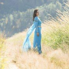 Supergirl: Erica Durance in Girl of Steel
