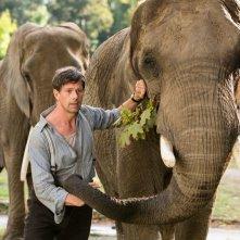 La signora dello zoo di Varsavia: Johan Heldenbergh in una scena del film