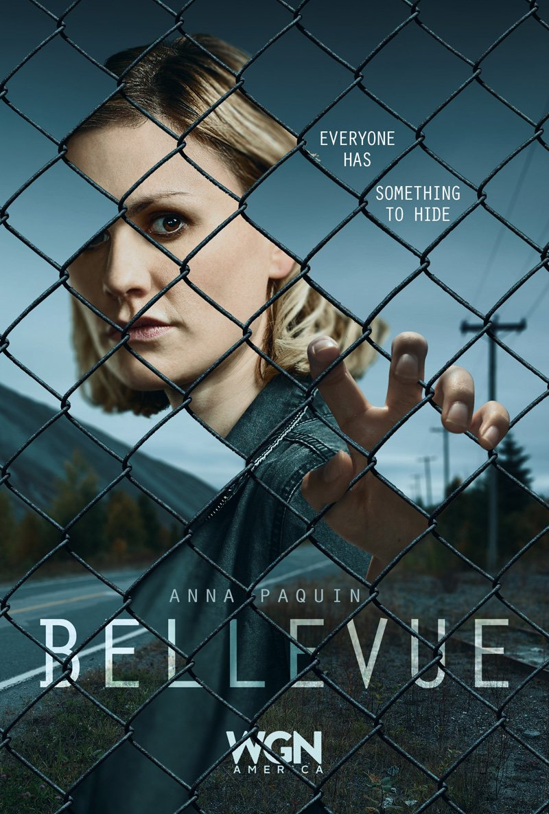 Bellevue Chain Link