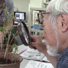 Never Ending Man: Hayao Miyazaki, Miyazaki in un'immagine del documentario