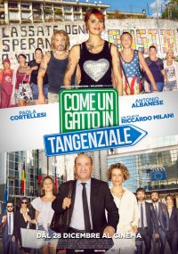 Come un gatto in tangenziale in streaming & download