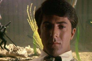 Il laureato: un primo piano di Dustin Hoffman