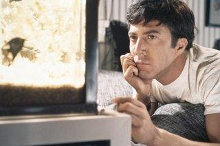 Il laureato: Dustin Hoffman in un momento del film