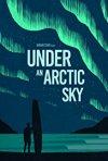 Locandina di Under an Arctic Sky