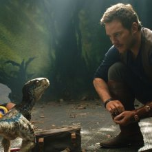 Jurassic World: Fallen Kingdom - Chris Pratt in una scena con ina tartaruga