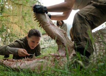 Annientamento: Natalie Portman in una scena del film