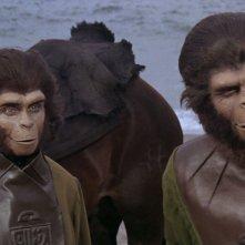Il pianeta delle scimmie: una scena del film