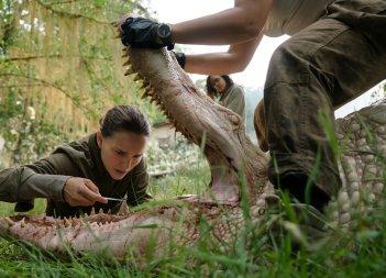 Annientamento: una scena con Natalie Portman