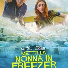 Locandina di Metti la nonna in freezer