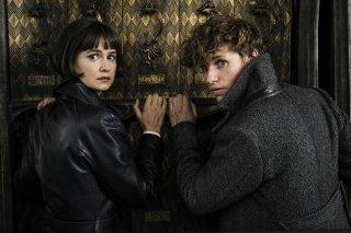 Animali Fantastici: I crimini di Grindelwald, Eddie Redmayne e Katherine Waterston in una foto del film
