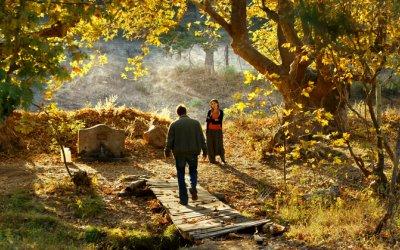 The Wild Pear Tree: il nuovo lungo, appagante viaggio nel cinema di Ceylan
