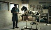 """Cannes 2018: un """"giorno da cani"""" con Dogman e Garrone, John Travolta ospite d'onore"""