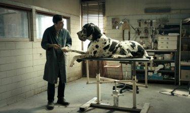 Dogman: Marcello Fonte in un'immagine tratta dal film