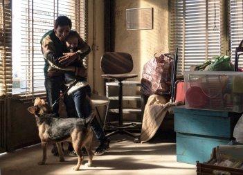 Dogman: Marcello Fonte in un'immagine del film