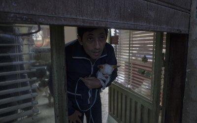 """Marcello Fonte è il """"Canaro"""" in Dogman: ritratto di un assassino dal cuore d'oro"""