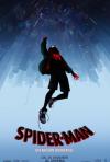 Locandina di Spider-Man: Un nuovo universo