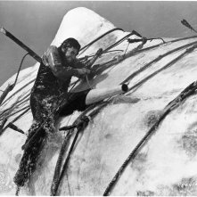 Moby Dick la balena bianca: Gregory Peck affronta la sua nemesi nel finale del film