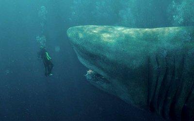 Recensione Shark - Il primo squalo: Jason Statham contro il Megalodonte