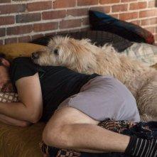 Dog Days: Adam Pally in una scena del film