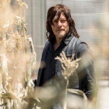 The Walking Dead: un primo piano di Norman Reedus