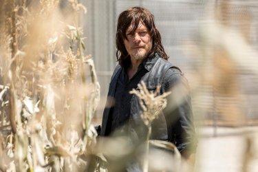 The Walking Dead Season 9 13