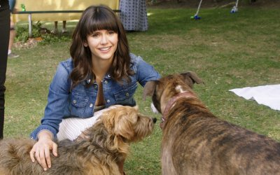 Recensione Dog Days: la felicità è a 4 zampe