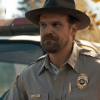 Stranger Things: David Harbour celebra un matrimonio in versione Hopper