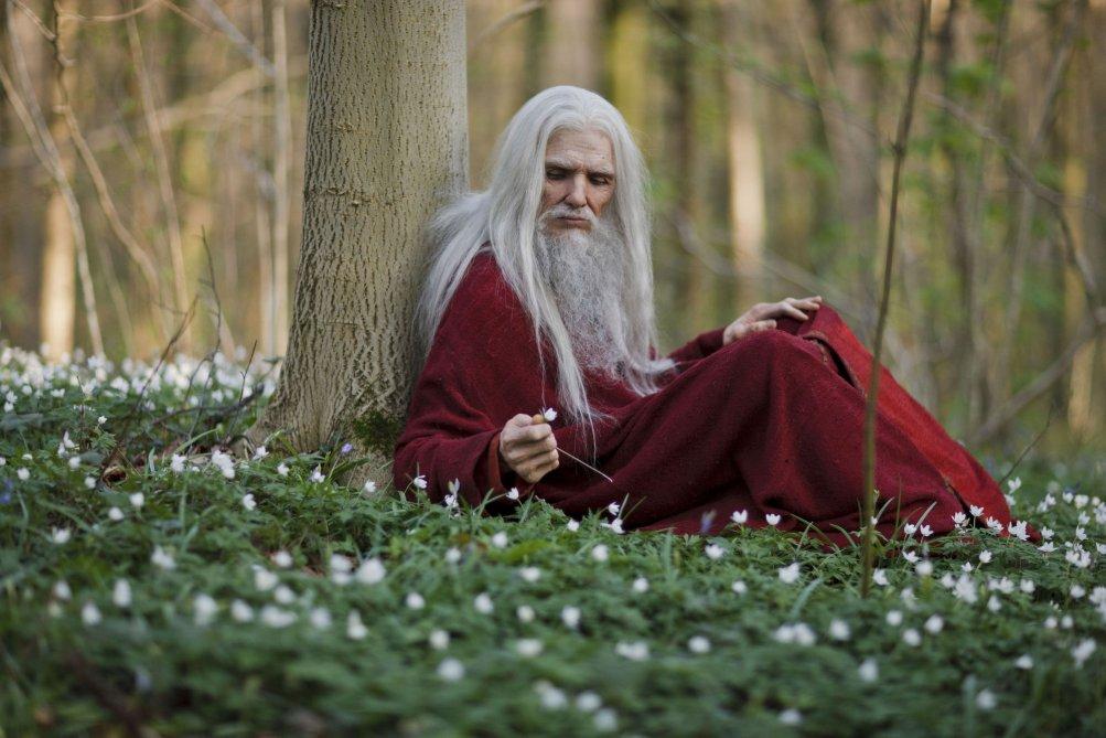 Merlin Servant